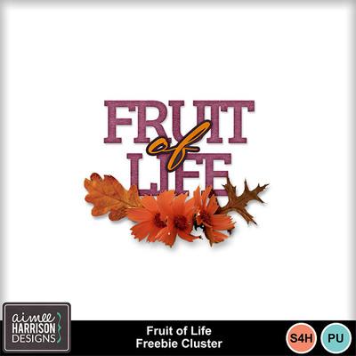 Aimeeh_fruitlife_stm