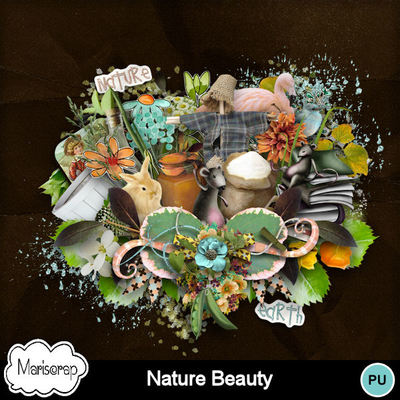 Msp_nature_beauty_pvmms