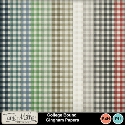 College_bound_gingham