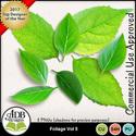 Cu_foliage05_600_small
