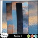 Msp_cu4cu_texture5_pvmms_small