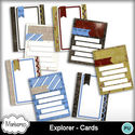 Msp_exlorer_pvcard_small