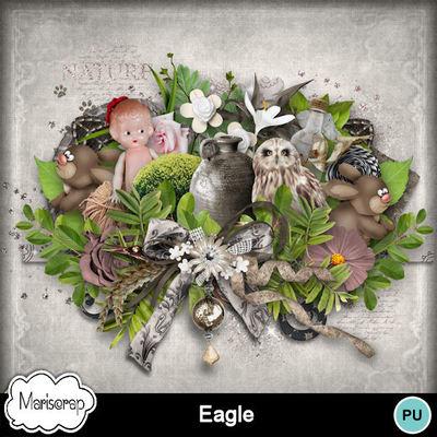 Msp_eagle_pv