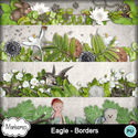 Msp_eagle_pv_borders_small