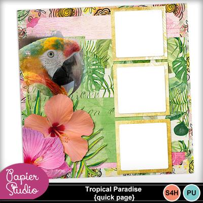 Tropical_birds_qp_pv