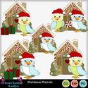 Christmas_parrots--tll_small
