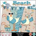 Beachcomber_mini_small