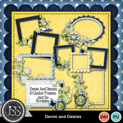 Denim_and_daisies_cluster_frames