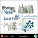 Sr_mgx_woodsywinter_wa_small