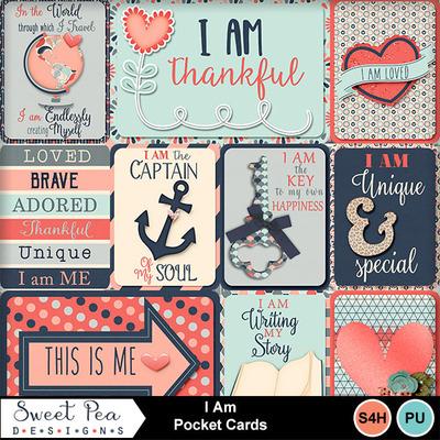 Spd_iam_pocketcards