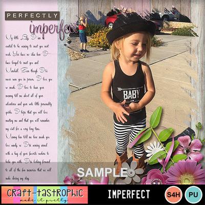 Ctd_mm_imperfect_sam3