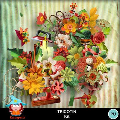 Kastagnette_tricotin_pv