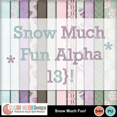 Snowmuchfun_ap-preview
