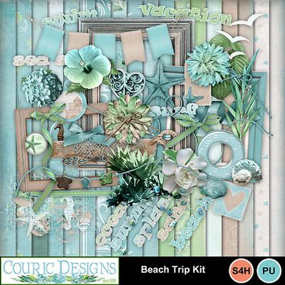 Beach-trip-1