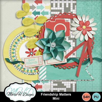 Friendship-matters-mini-01