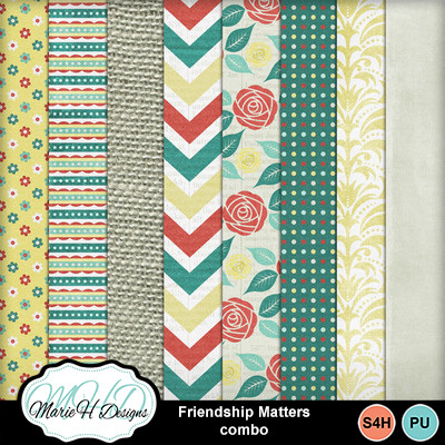 Friendship-matters-combo-02