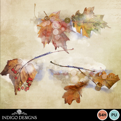 Enjoy_the_autumn_overlays