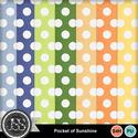 Pocket_of_sunshine_polkadot_papers_small