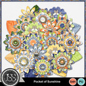 Pocket_of_sunshine_flowers_small