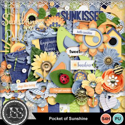Pocket_of_sunshine_kit