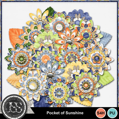 Pocket_of_sunshine_flowers
