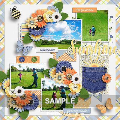 Pocket_of_sunshine_s1