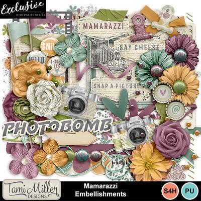 Tmd_mamarazzi_embellishments