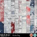 Flytheflag15_small
