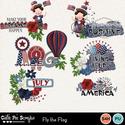 Flytheflag14_small