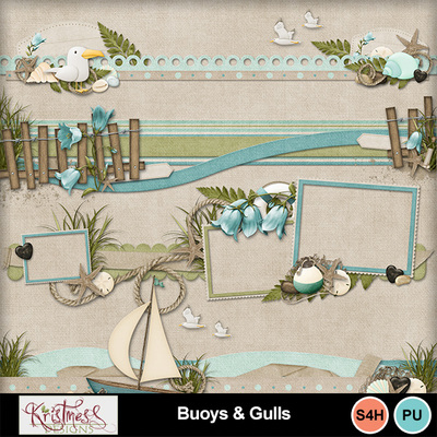 Buoys_gulls_bdrs