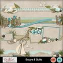 Buoys_gulls_bdrs_small