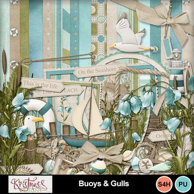 Buoys_gulls