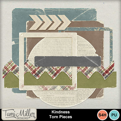 Kindness_torn_pieces