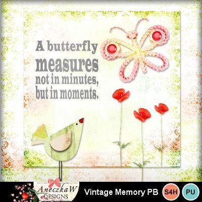 40_vintage_memory_pb-001
