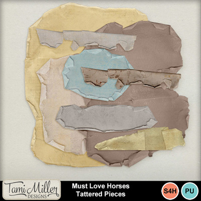 Must_love_horses_tattered_pieces