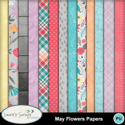 Mm_ls_mayflowers_papers