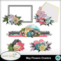 Mm_ls_mayflowers_clusters_small