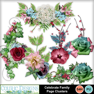 Celebrate-family-page-clusters