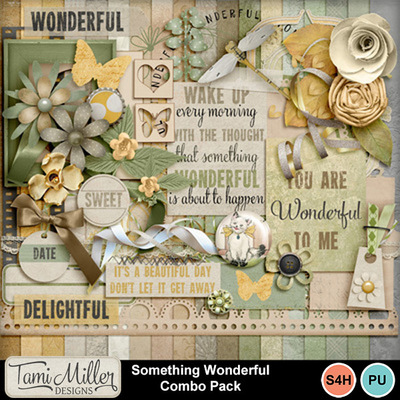 Something_wonderful_combo_pack