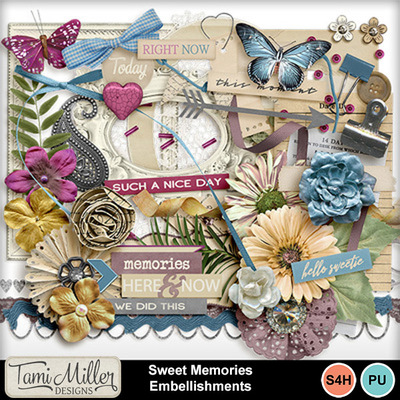 Sweet_memories_embellishments