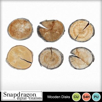 Sdc_woodendisk_pre