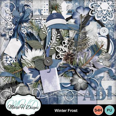 Winter-frost-01