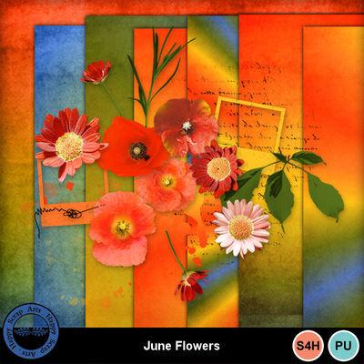 Juneflowers2
