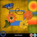 Juneflowersaddon_small