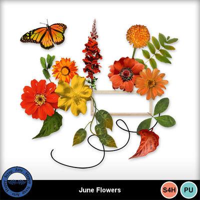 Juneflowers1a