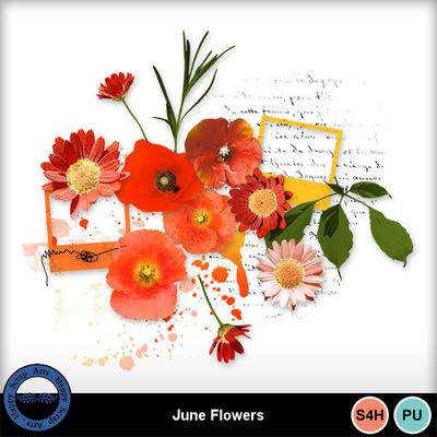 Juneflowers2a