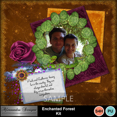 Enchanted_forest-10