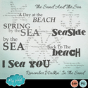 Back_to_the_sea_word_arts_small