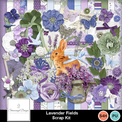 Sd_lavenderfields