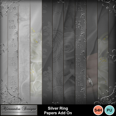 Silver_ring_papers_add_on-3